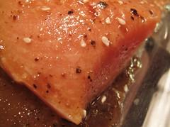 HMM ~ Gone Fishing edition (karma (Karen)) Tags: macromondays hmm gonefishing salmon sesameseeds