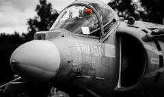 01-925 (Mark Holt Photography - 8 Million Views (Thanks) Tags: royalinternationalairtattoo spanishairforce eav8bharrierii 01925