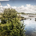 THE RIVER CORRIB GALWAY [PHOTOGRAPHED AUGUST 2015 USING A SONY NEX-7]-154339