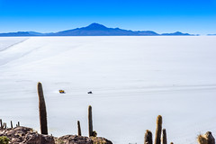A sea of salt. Salar de Uyuni, Bolivia (ravalli1) Tags: bolivia uyuni salt salar lago lake andes southamerica potosi nature nikon750