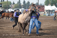 CPRA 36th Annual Rodeo (tallhuskymike) Tags: cpra rodeo event cowboy cowgirl 2018 horse horses cochrane western action alberta