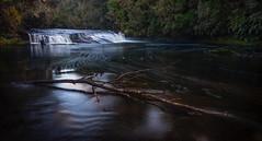 29 of 52 Weeks (Lyndon (NZ)) Tags: week292019 startingtuesdayjuly162019 52weeksthe2019edition ilce7m2 sony newzealand nature nz water tauranga motion river waterfall longexposure