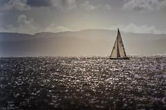 Sail Away (waves_and_wonders) Tags: