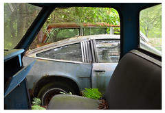 through the window (mcfcrandall) Tags: car rust paint peeling summer plants overgrown autowreckers automobile abandoned old neglected metal chrome chevy monza chevrolet