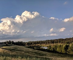 Cumulus clouds over the slough--Explored (yooperann) Tags: