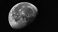 Amman Morning Moon-1 (waning gibbous), Amman, Jordan (MikeM_1201) Tags: moon waninggibbous amman jordan d500 apartmentverandah morning monochrome bw apollo11 landingsite seaoftranquility craters nasa