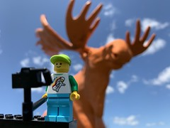 2019-203 - The Orange Moose (Steve Schar) Tags: selfie camera orange moose legotravelbuddy minifigure lego iphonexs iphone project365 blackriverfalls wisconsin 2019