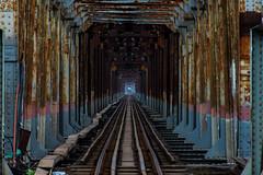 Long Biên Bridge (Greg M Rohan) Tags: nikon nikkor 2017 d7200 bridge asia vietnam hanoi longbiênbridge longbiên geometry 橋 ベトナム 越南 河內 ハノイ ブリッジ ロングビエン橋