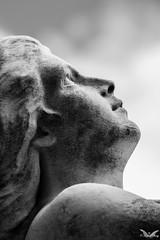 Genova, Cimitero di Pra' Palmaro (Sven Kapunkt) Tags: gräber grab graveyard grabmal gothic grabstätte genova genua friedhof friedhöfe ligurien liguria italia italien italy cemetery cemeteries cimetière campo cimitero certosa camposanto angel engel darkness sw