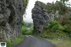 Étroit et brumeux (https://pays-basque-et-bearn.pagexl.com/) Tags: 2019 64 aquitaine barétous béarn colinebuch france valléedaspe forêtdissaux montagne nature paysage pyrénées pyrénéesatlantiques vallée