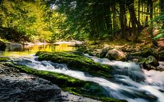 Rio Arazas (Andreas Lachmuth) Tags: valledeodessa ordesaymonteperdido rio gebirgsbach berge pyrenäen pirineos aragon altaaragon torla sobrabe wildbach