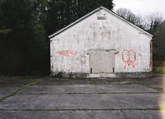 De Salle 10 (Irish Normal) Tags: mamiya 645 m645 1000s mediumformat 120mm c41 80mm f28 6x45 ireland kerry film analogue derelict forgotten empty