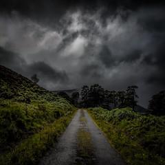 Bravery (prajpix) Tags: green highlands scotland landscape square outside outdoors road track sky clouds weather rain trees woods woodland pinewood photoshopmanipulation drama dramatic wet hills mountains