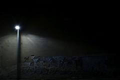 Of Suburban Decadence (Robin Shepperson) Tags: dark city deutschland berlin germany nikon d3400 1855mm light urban graffiti rot decay decadence night lampost street bricks wall corner 21