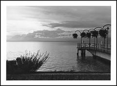 Morges, lac Léman juste avant l'orage (cdut70) Tags: argentique photoargentique paysage landscape bw noiretblanc ilfordhp5 lacléman suisse morges lacdegenève nikon nikonf80 nikon50mmf18 blackandwhite paysageilfordhp5 papierphotoilford ilfordid11 révélateurid11 ilfordrcmgperlé pelliculeilfordhp5 filmbw filmnoiretblanc lac lake