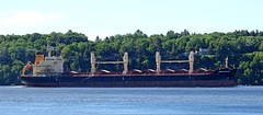 Union Groove - IMO 9580106 (J. Trempe 3,990 K hits - Merci-Thanks) Tags: stefoy quebec canada ship navire fleuve river stlaurent stlawrence vraquier bulker union groove