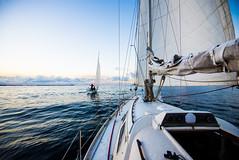 Sailing (Thibaut Muster) Tags: sailing