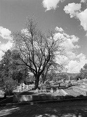 Mount Moriah Cemetery (LarsHolte) Tags: pentax 645 pentax645 645n 6x45 smcpentaxa 35mm f35 120 film 120film analog analogue kosmo foto mono 100iso mediumformat blackandwhite classicblackwhite bw monochrome filmforever filmphotography ishootfilm d76 larsholte homeprocessing usa southdakota deadwood mountmoriah cemetery landscape