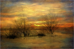 Paisaje con textura (Fernando Forniés Gracia) Tags: españa aragón zaragoza invierno paisaje texturas landscape