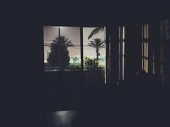 185/365 | The Quiet