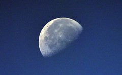 Moon from my deck (D70) Tags: sigma 150600mm f563 contemporary tc1401 teleconverter moon from deck 850am july23 2019