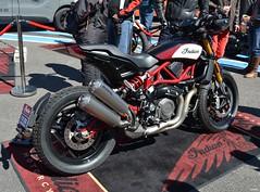 INDIAN FTR 1200 - 2019 (SASSAchris) Tags: indian ftr 1200 1200cc ftr1200 moto américaine sunday sundayrideclassic ricard ride classic castellet circuit httt htttcircuitpaulricard htttcircuitducastellet