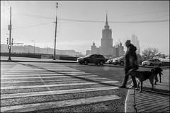 DR151107_1697D (dmitryzhkov) Tags: urban city everyday public place outdoor life human social stranger documentary photojournalism candid street dmitryryzhkov moscow russia streetphotography people man mankind humanity bw blackandwhite monochrome