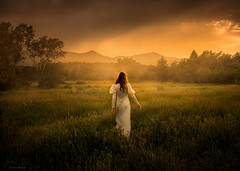Into the Light ({jessica drossin}) Tags: jessicadrossin portrait woman back meadow alone colorado trees grass green orange summer mountains sky clouds sunset naturallight wwwjessicadrossincom