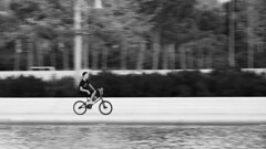 Speed kills, but with skills thrills... (Michael Kalognomos - on vacations) Tags: canon photography streetstories streetlife streetphotography biker bike bicycle boy kid canal youth young snfccstavrosniarchosfoundationculturalcentre athens greece summer blackandwhite bw panning panoramic trees canoneos5dmarkiii ef70210mmf3545usm