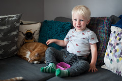 Arthur, day 229, 365 days / Year 2. (evilibby) Tags: arthur toddler barnabee cat gingercat ginger cats cattail sofa livingroom snacktime arthurs365days