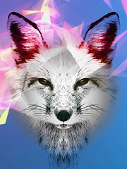 Foxy #fox #art #artist #digitalism #digitalart #digitalpainting #animals #wild #photoart #love #ottawa #montreal #toronto #tokyo #japan #kyoto #london #paris #berlin #germany #iran #iranian #persian #tehran #nyc #losangeles