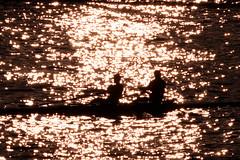 La Meuse à la Boverie (Liège 2019) (LiveFromLiege) Tags: rowing aviron sunset coucherdesoleil meuse boverie liège belgique reflets reflection eau luik wallonie architecture liege lüttich liegi lieja belgium europe city visitezliège visitliege urban belgien belgie belgio リエージュ льеж coucher de soleil silhouette silhouettes contrejour people personnes citylife