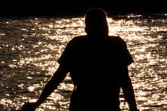 La Meuse à la Boverie (Liège 2019) (LiveFromLiege) Tags: silhouette sunset coucherdesoleil boverie meuse liège luik wallonie belgique architecture liege lüttich liegi lieja belgium europe city visitezliège visitliege urban belgien belgie belgio リエージュ льеж coucher de soleil silhouettes contrejour people personnes citylife
