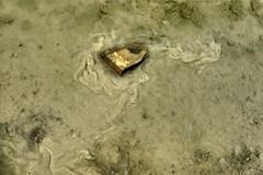 stone in the mud (erix!) Tags: stone mud stein schlamm wasser water fluid jurakalk