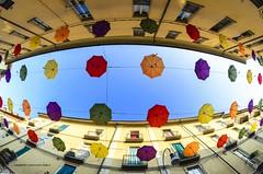 umbrellas (Peppis) Tags: ombrelli torino piemonte italy italia bestimageofitaly opteka fisheye umbrellas colours sky nikon nikond7000 peppis giuseppecostanzo nationalgeographic lacittàmetropolitanaditorinovistadavoi