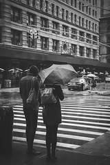 Rain on 5th Avenue (Michael Erhardsson) Tags: new york usa resa 2018 blackandwhite svartvitt