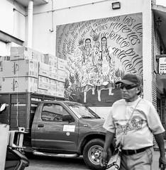 Mural flor de piña (Marcos Núñez Núñez) Tags: street streetshot señor streetphoto streetphotographer streetphotography rolleiflex rolleiflex35f national ilfordhp5plus400 ilford ilfordhp5plus ilfordhp5 tuxtepec filmphotography film analogicphotography analogue formatomedio bw bwstreet blackandwhite blancoynegro blackwhite blackandwhitestreet vivianmaierinspired oax oaxaca