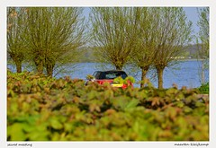 SECRET MEETING (Maarten Kleijkamp) Tags: car meeting secret auto ontmoeting meetingpoint lake meer trees bomen vehicle red rood knotwilgen