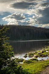 bugs! (laughlinc) Tags: uintahmountains nikon7200 utah uintah lake landscape laughlinc mirrorlake
