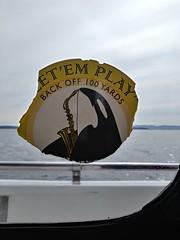 Let 'em Play Back off 100 Yards (defndaines) Tags: orca sax saxophone killerwhale