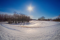 Winter on the Levee (WOODSHED Revisited) Tags: winter chaska minnesota minn mn river levee snow sun wideangle rokinon 8mm fisheye fish eye lens pentax ks2 marthadecker woodshed carver county outside outdoors cold wide angle