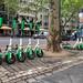 E-Scooter von Lime am Straßenrand in Köln, um sich autofrei durch die Stadt zu bewegen