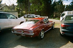 1968 Ford Mustang (photo 2) (Matthew Paul Argall) Tags: kodakflashsingleusecamera singleusecamera 35mmfilm disposablecamera 800isofilm kodak800 car vehicle automobile transportation fordmustang classiccar