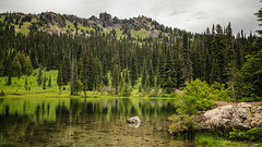 Sheep Lake (writing with light 2422 (Not Pro)) Tags: sheeplake lake washingtonstate pnw thegreatpnw pacificnorthwest green landscape sonya7riii richborder rich border rock reflections peaks ridge firtrees tonecurve hiking pct pacificcresttrail washingtontrailsassociation