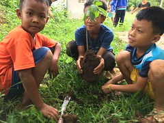 Planting fruit trees at the primary school