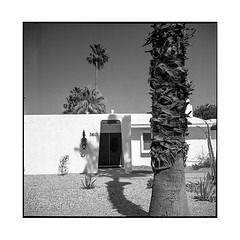 360 • palm springs, ca • 2018 (lem's) Tags: house midcentury architecture palmiers palm springs desert maison ca california rolleiflex t