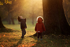 """""""Mighty oaks from little acorns grow"""" (nicolewitschass) Tags: boy boys son sun fall autums warm colors light sunlight sunflare mighty children magic childhood memories siblings tall tree almighty outside outdoors natural astounding photographer momtographer nikon d750 child looking up"""