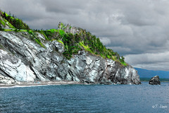 Rock Into the Water (Tarq Photography) Tags: rock trees water mountains summer outdoors cloudy sky forest grey green side edge coastal region nova scotia