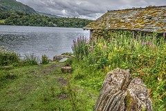 Summer Boathouse (vincocamm) Tags: cumbria lakedistrict english grasmere water trees woods clouds cloudy roof moss weeds building old boathouse green grass clump decay slate nikon d5500 stump