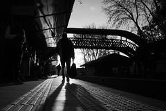 (Claudio Blanc) Tags: street streetphotography silhouette silhoutte buenosaires bw bn blancoynegro blackandwhite train tren fotografíacallejera
